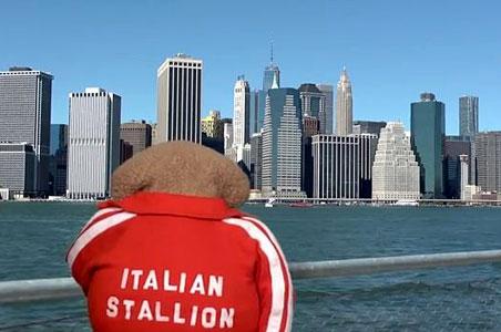 johnnyt-video-newyorkcity.JPG