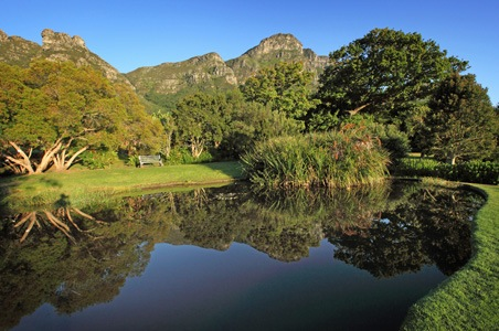 kirstenbosch-national-botanical-gardens-.jpg