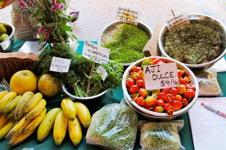 mercado-agricola3.jpg