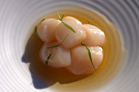 nantucket-scallops.jpg