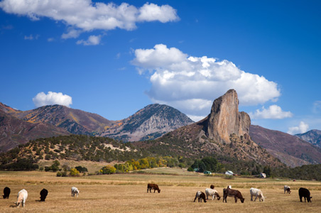 needle-rock-crawford-colorado.jpg