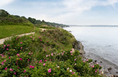 newport-cliff-walk.jpg