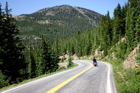 road-scout.jpg