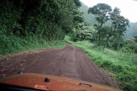 road-to-hana-hawaii.jpg