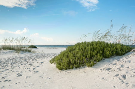 rosemary-beach-florida.jpg