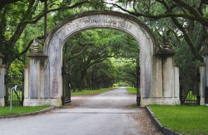 savannah-plantation.jpg