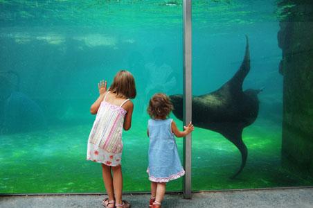 schonbrunn-zoo.jpg