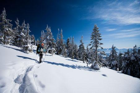 snowshoe-bc.jpg