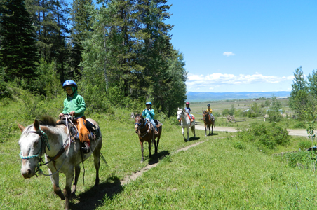 teton-valley-horses.jpg