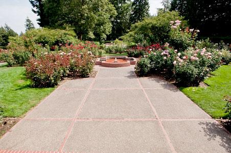 wash-rose-garden.jpg