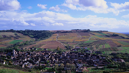 Photo of Champagne Country