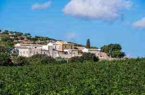 'You Need to Eat More': Sicily for Food and Wine Lovers