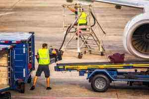 Curious Cargo: 20 Strange Things You Didn't Know Were Flying With You