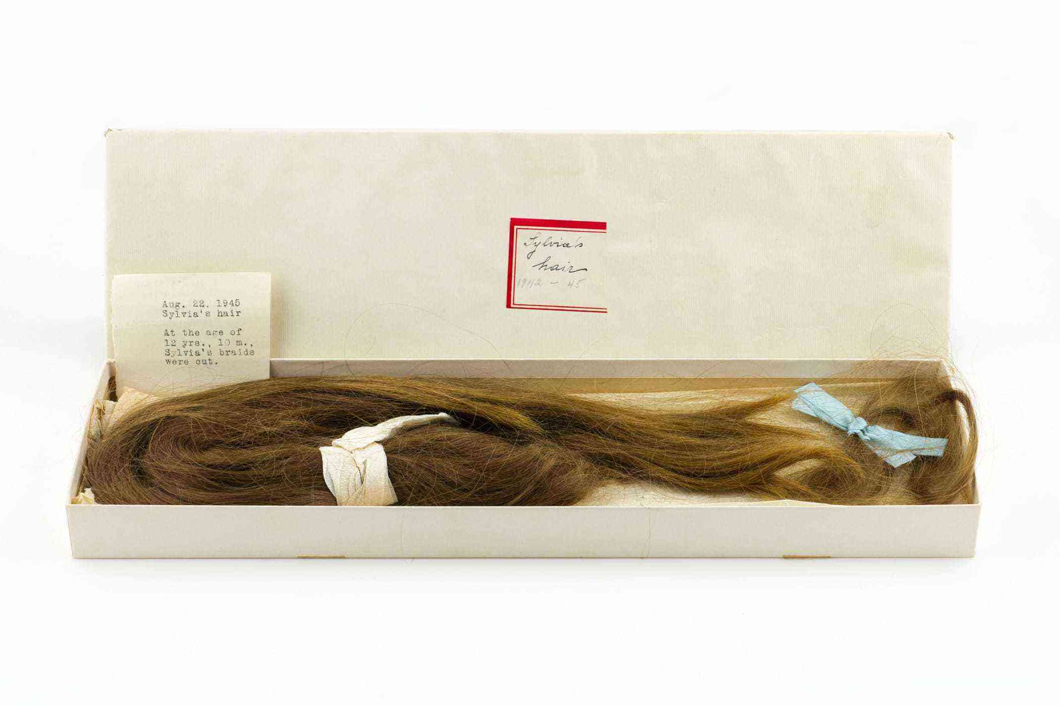 Sylvia Plath's Childhood PonytailCourtesy The LIlly LIbrary