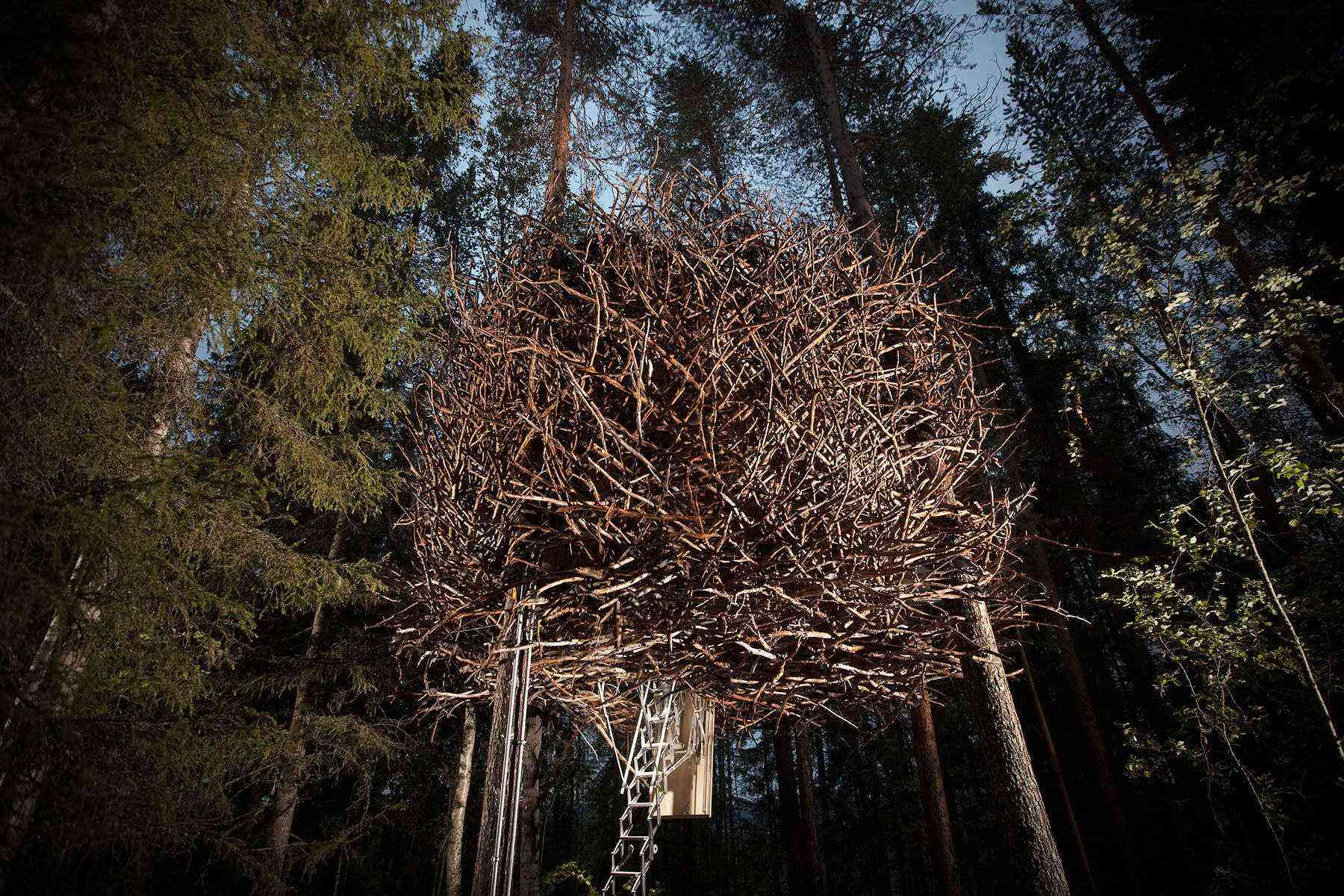 10 Weird Treehouses to Stay in Around the World