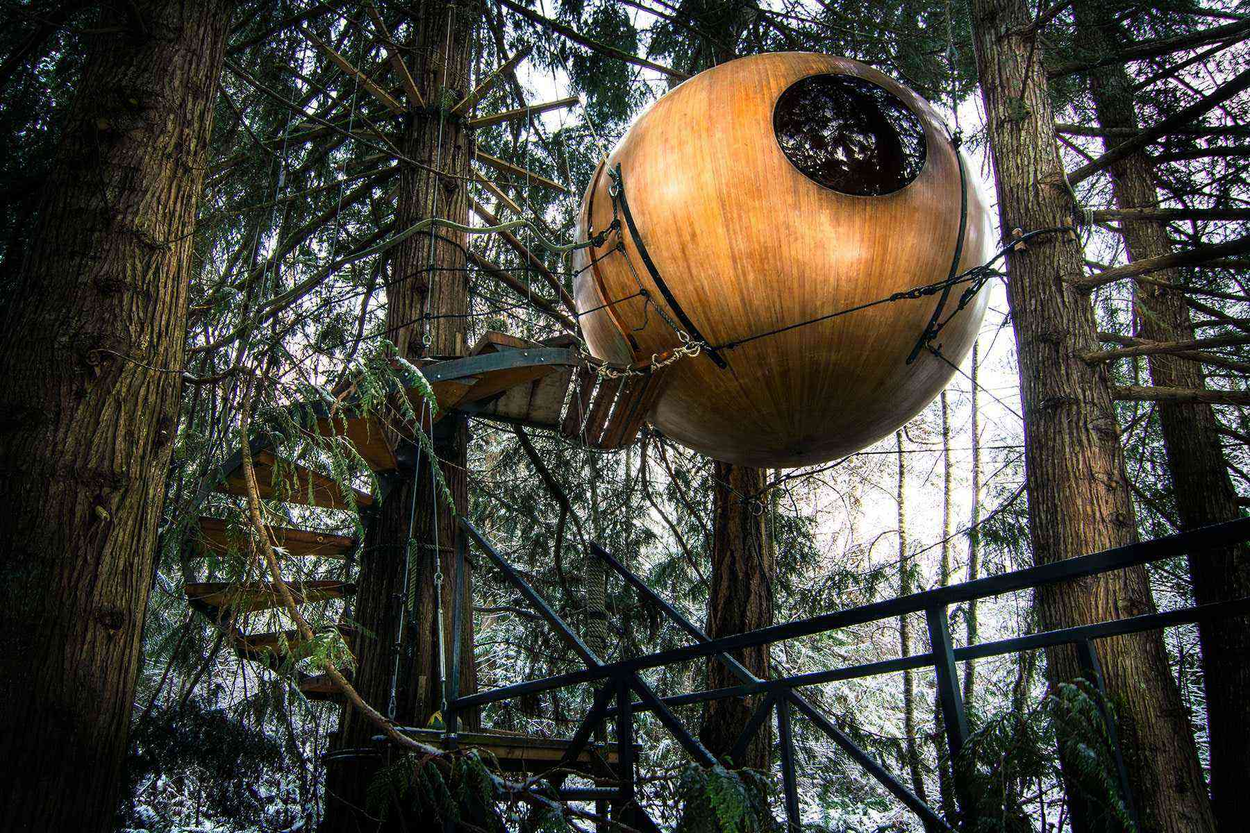 Unusual treehouses free spirit spheres 1