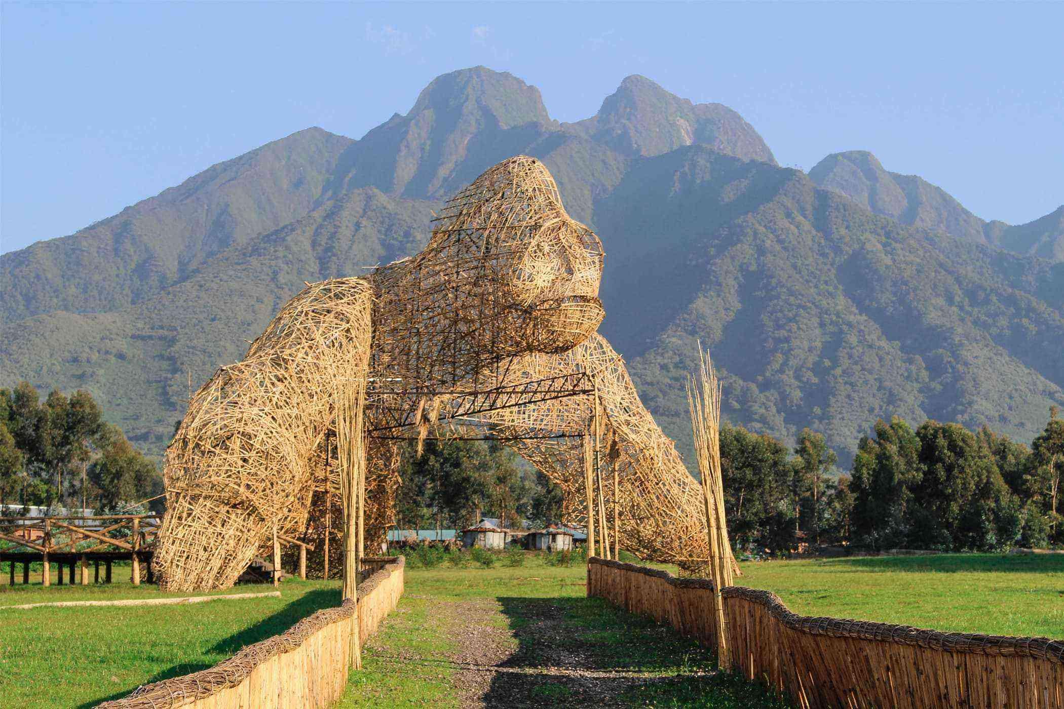 Virunga Mountain