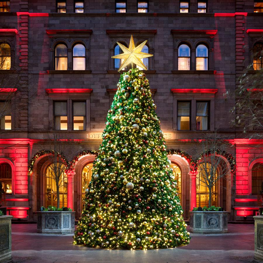 Christmas Tree In Ny: 14 NYC Christmas Trees (Besides Rockefeller Center