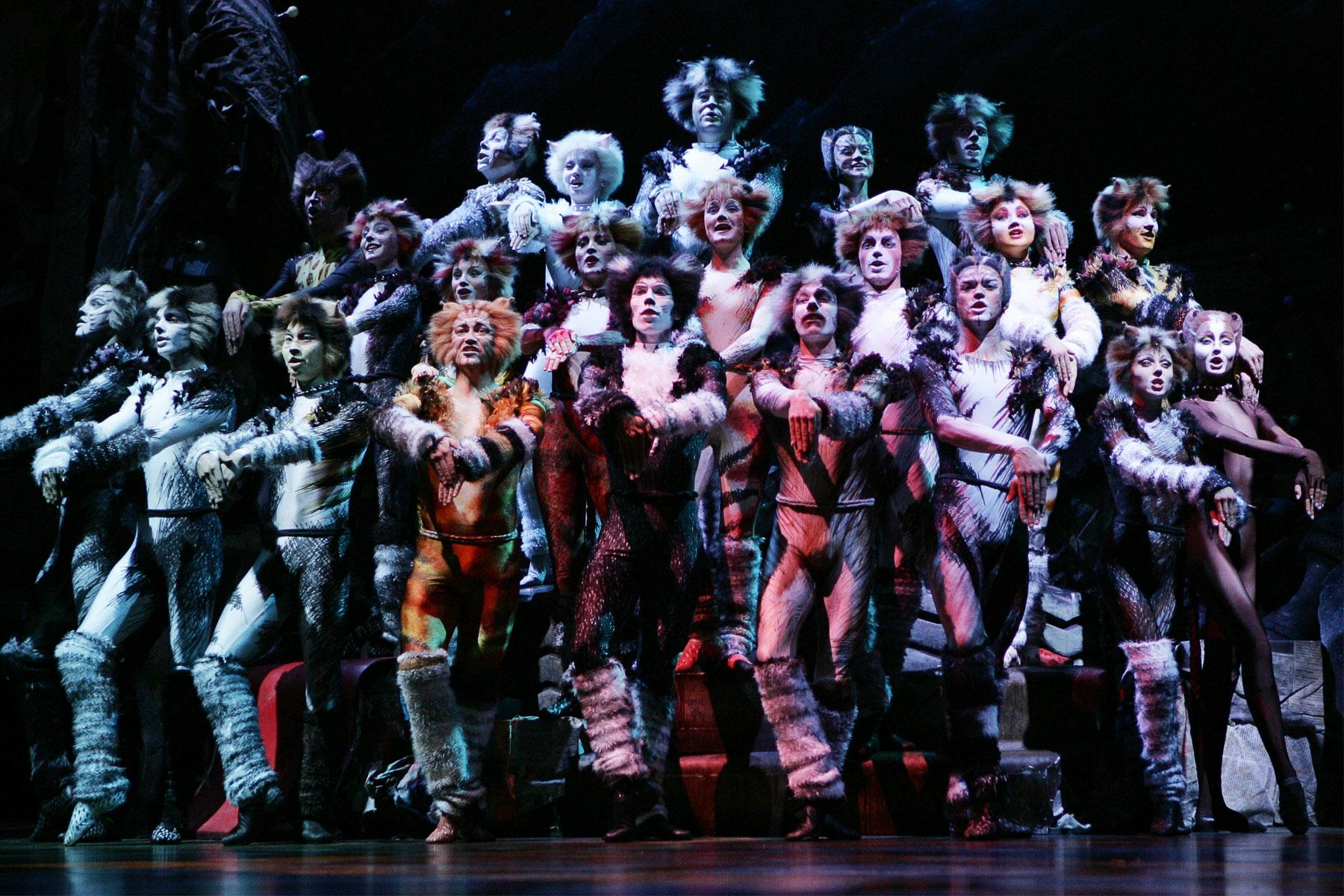 Seeing Cats On Broadway Is The Greatest Acid Trip You Ll