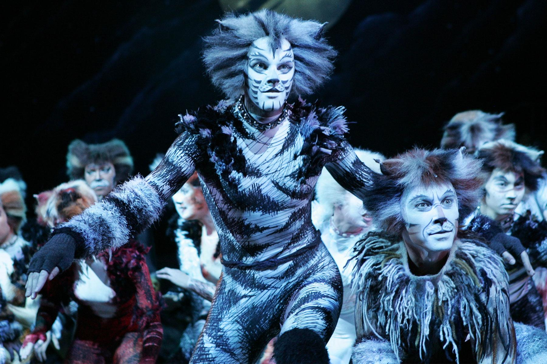 Seeing Cats on Broadway Is the Greatest Acid Trip You'll