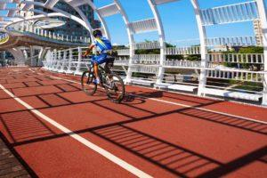 The World's 12 Most Bike-Friendly Cities