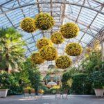 When Flowers Aren't Enough: 13 Fun Festivals at Botanic Gardens