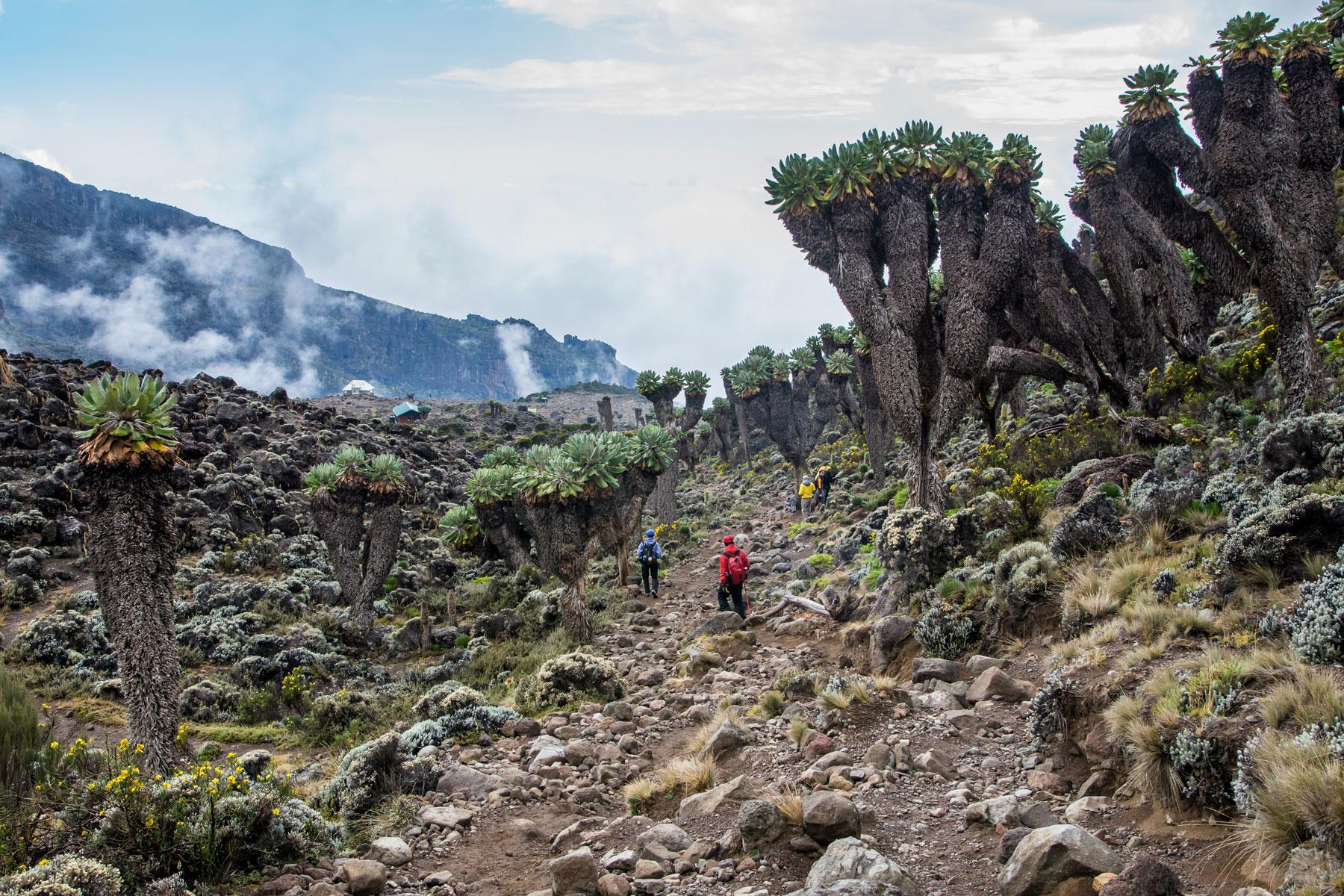 The 10 Most Stunning Hikes in Africa