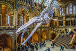 20 of the Best Museums in London