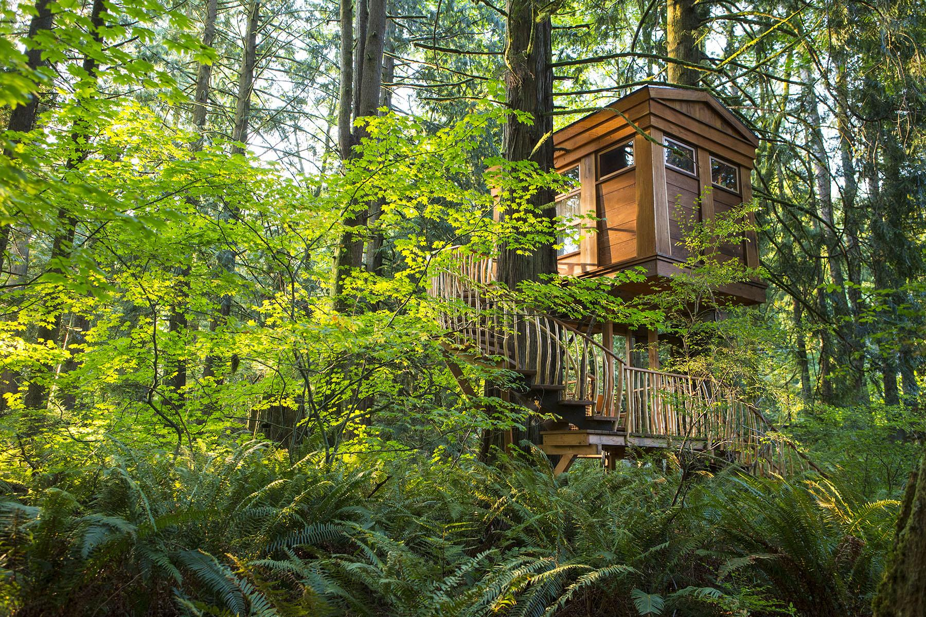 10 Tree-House Hotels in the U S