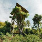 10 Incredible Treehouse Hotels in the U.S.