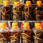 booze-around-the-world-snake_wine