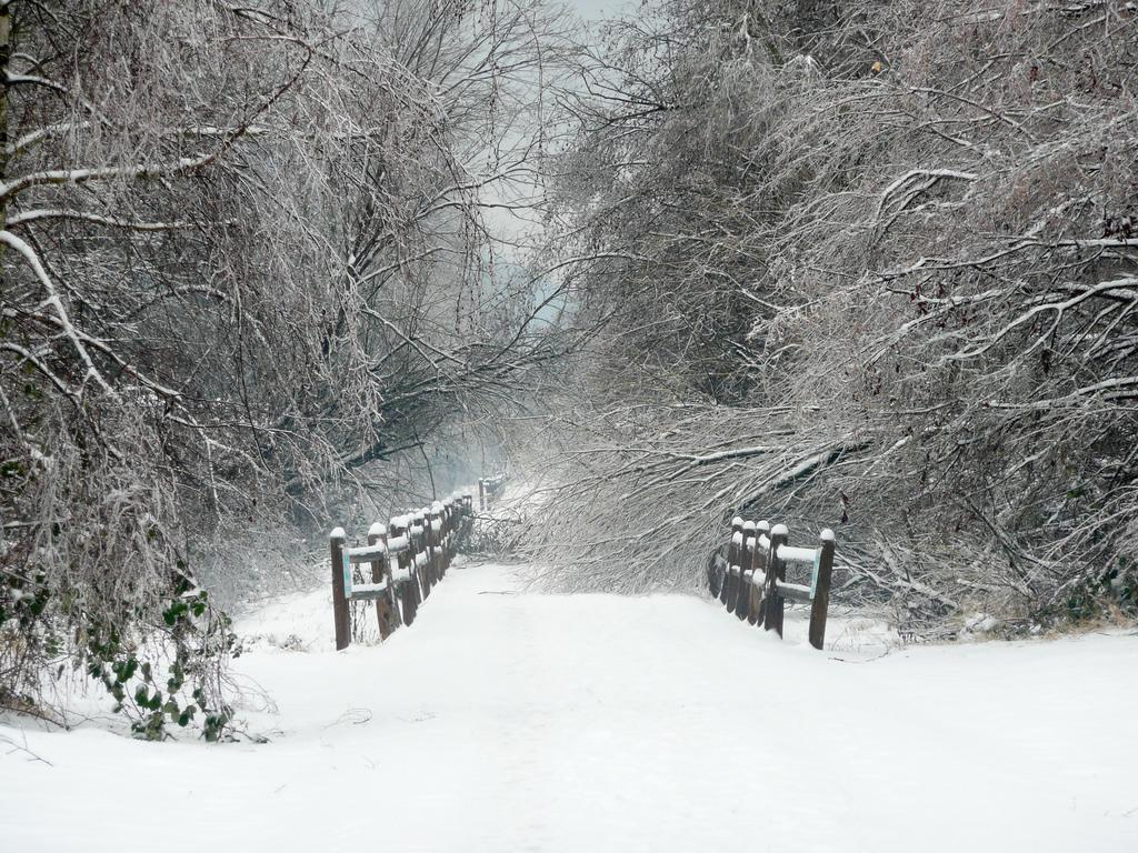 The Sammamish Trail in winter