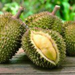 24_25WTEDChina__Durian_shutterstock_422852002