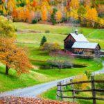 What to Watch and Read Before You Visit New England