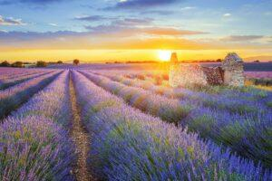 15 Picture-Perfect Towns in Provence, France