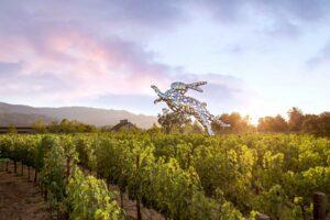The Art Lover's Guide to Napa and Sonoma