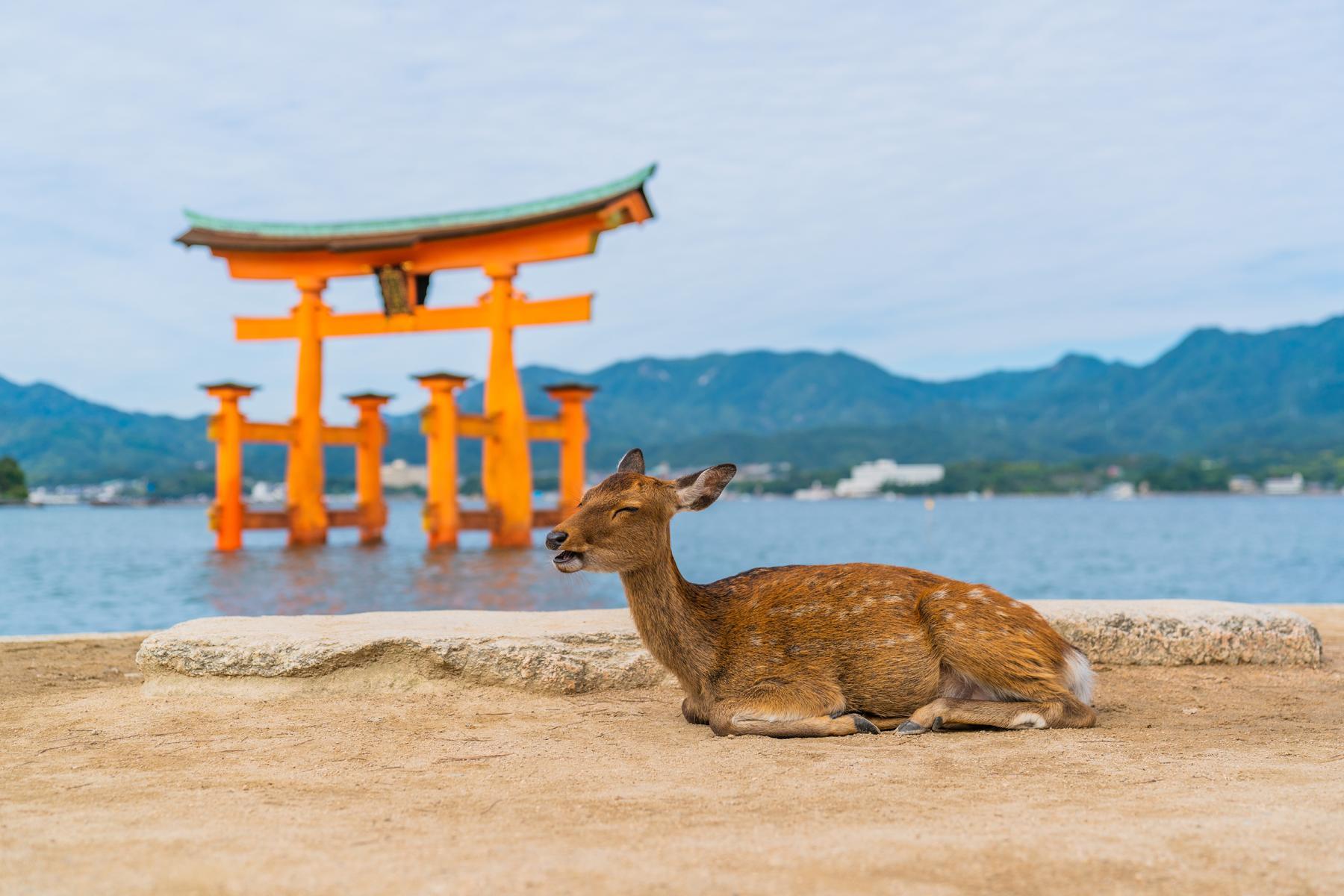 https://www.fodors.com/wp-content/uploads/2019/04/Miyajima-Happy-Island_Hero.jpg