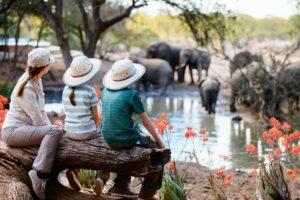 Family Vacation Ideas for Animal Lovers