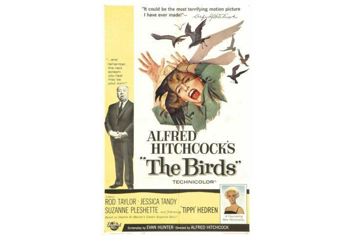 02_Napa_BooksMovies_The_Birds_Wikimedia_2
