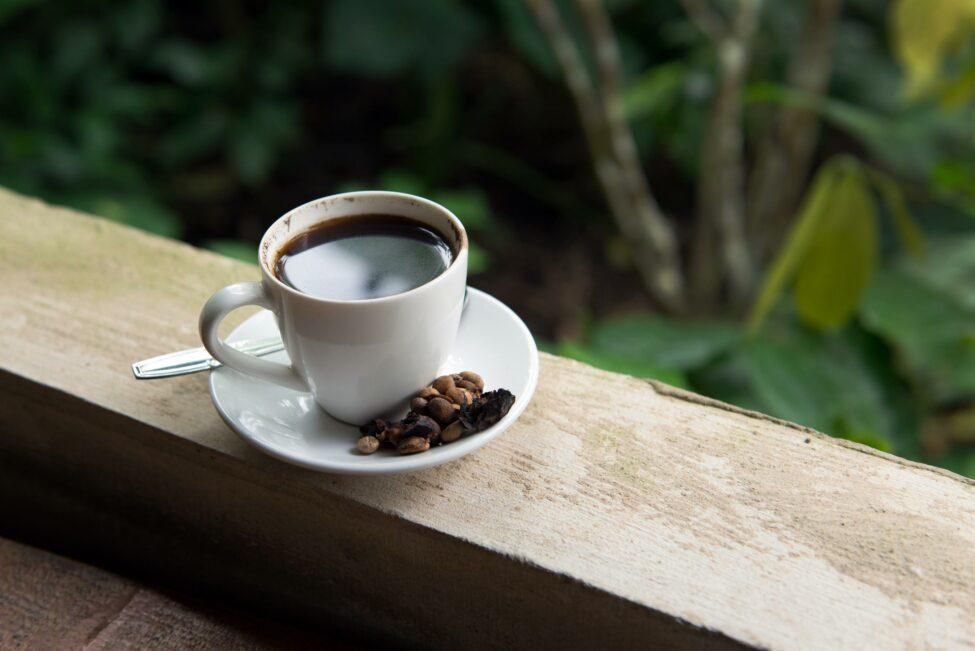 Kopi Luwak (Poop Coffee)