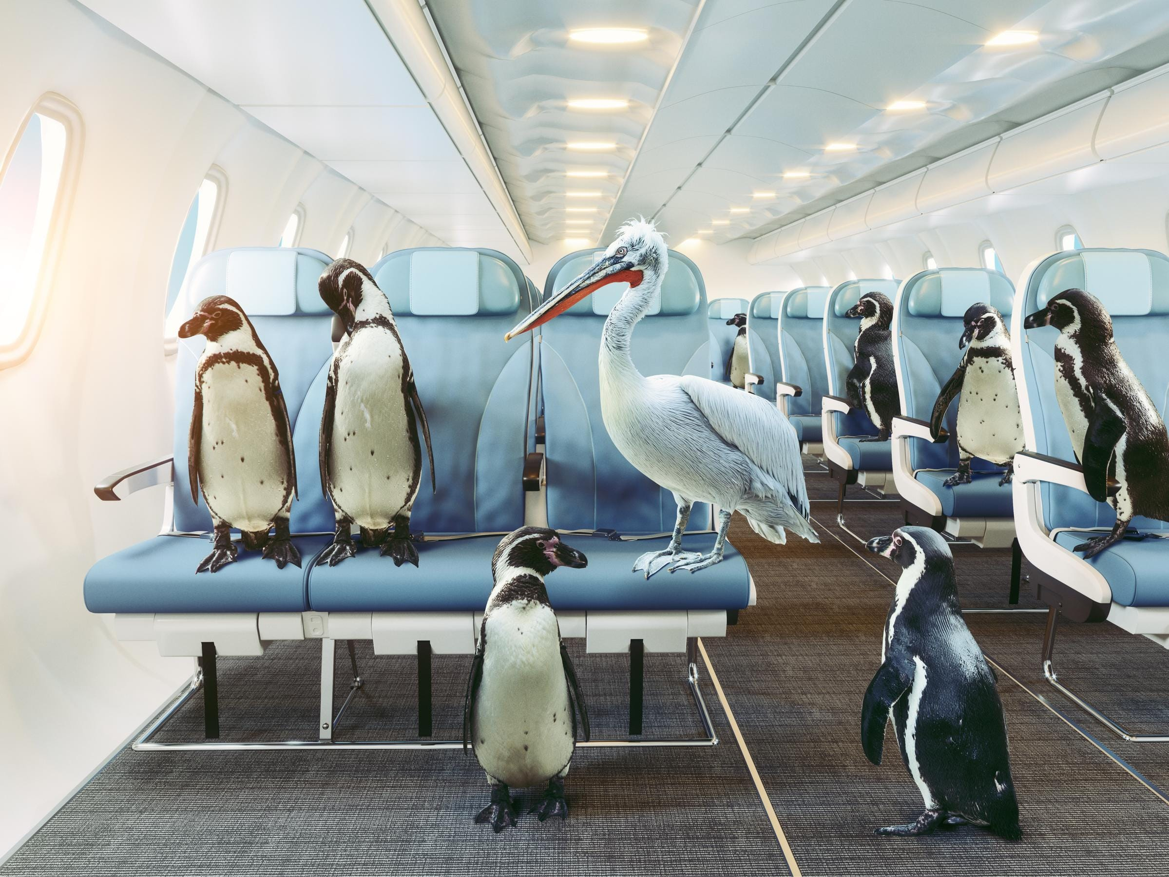 Travel Secrets Unveiled: What's With the Temperatures on Planes?