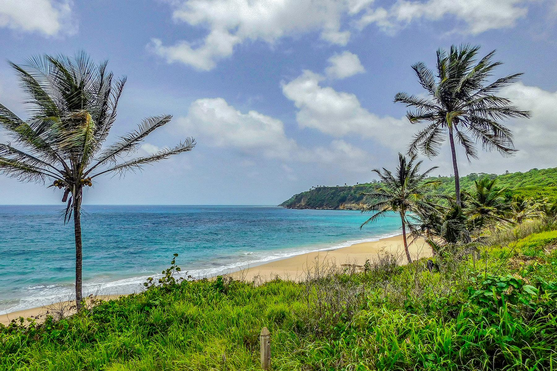 The Best Beaches in Puerto Rico