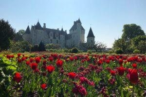 The Loire Valley Has a Château for Everyone