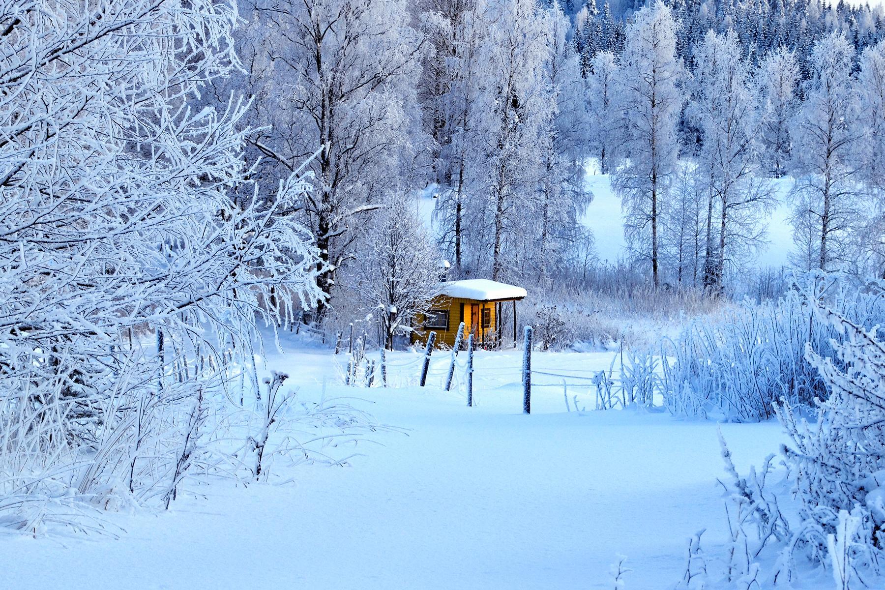 Best Saunas In Finland