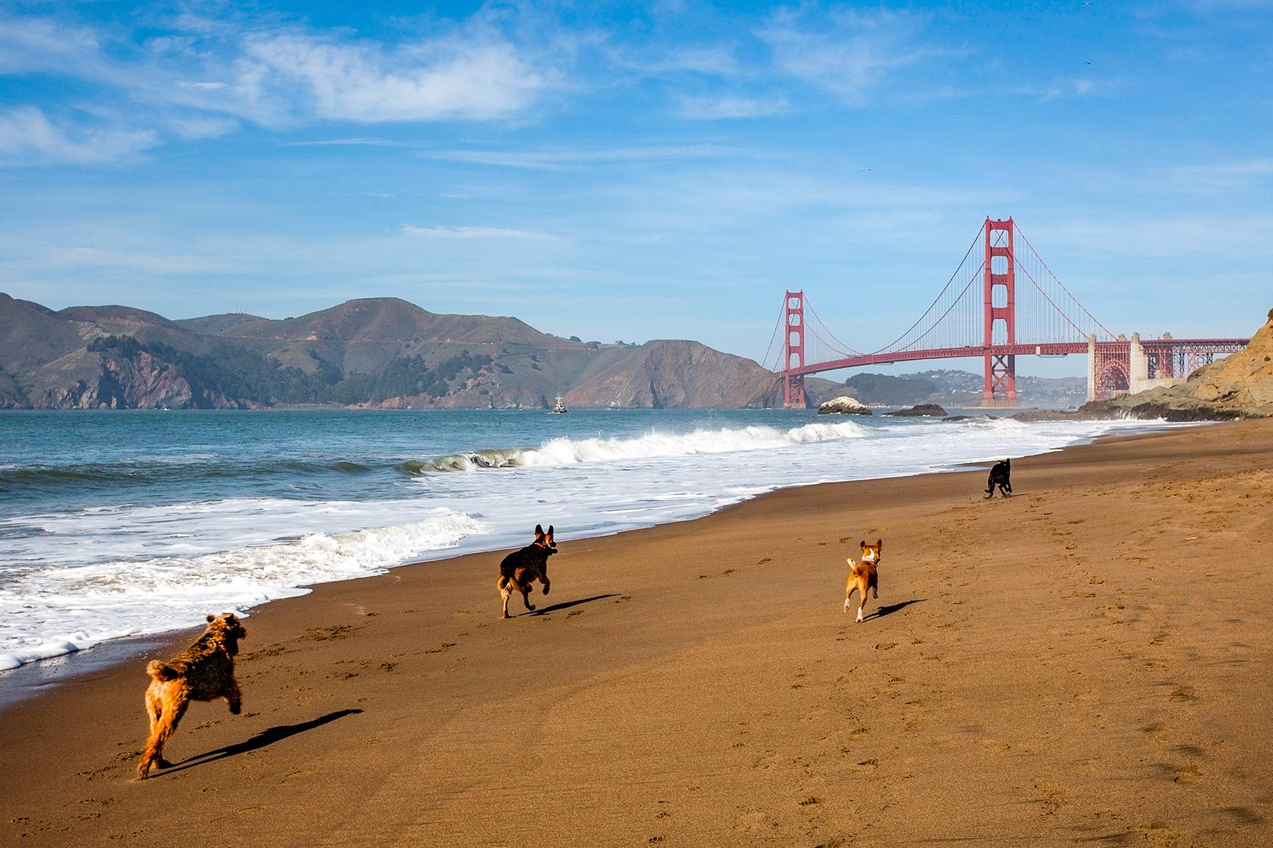 What to Know Before You Go to San Francisco, California