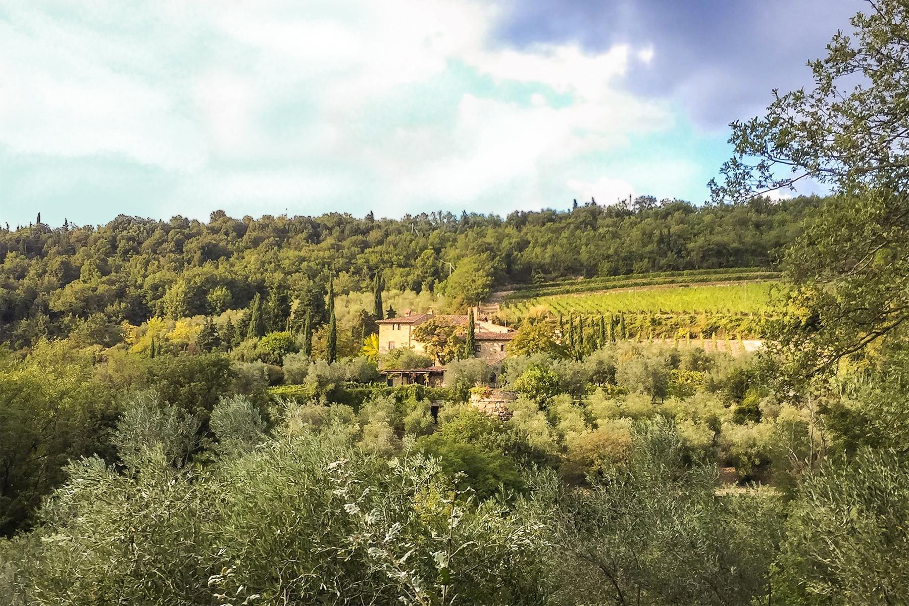 Did You Even Go to Italy If You Didn't Visit the 10 Best Wineries in Tuscany?