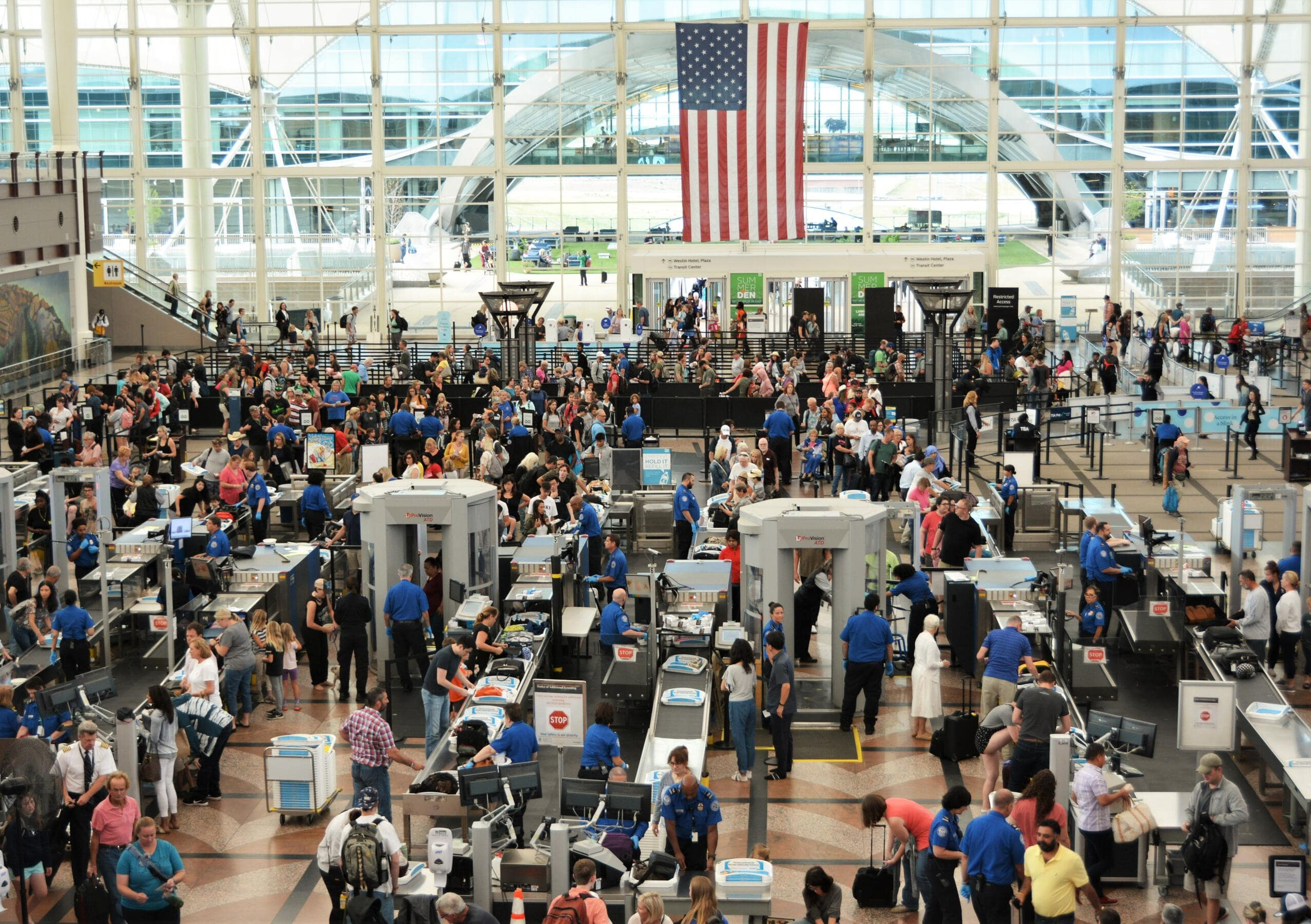 Navigating a Nightmare: How to Get Through TSA Without an ID