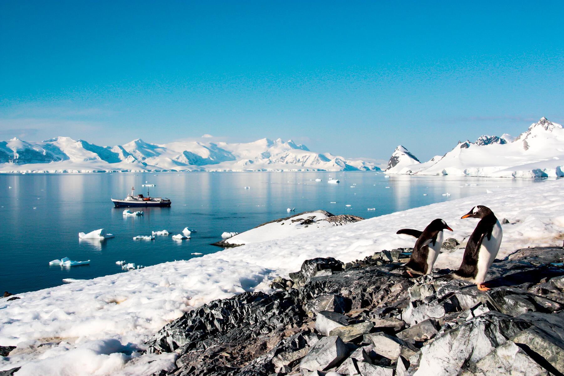 06_UnexpectedHoneymoons__TakeaCruisetoAntarctica_6.) Antarctica ship and two penguins - Courtesy of Adventure Life