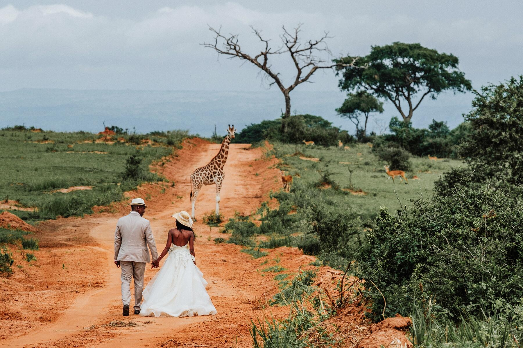 Should I Hold My Wedding or Honeymoon During the Coronavirus Pandemic?