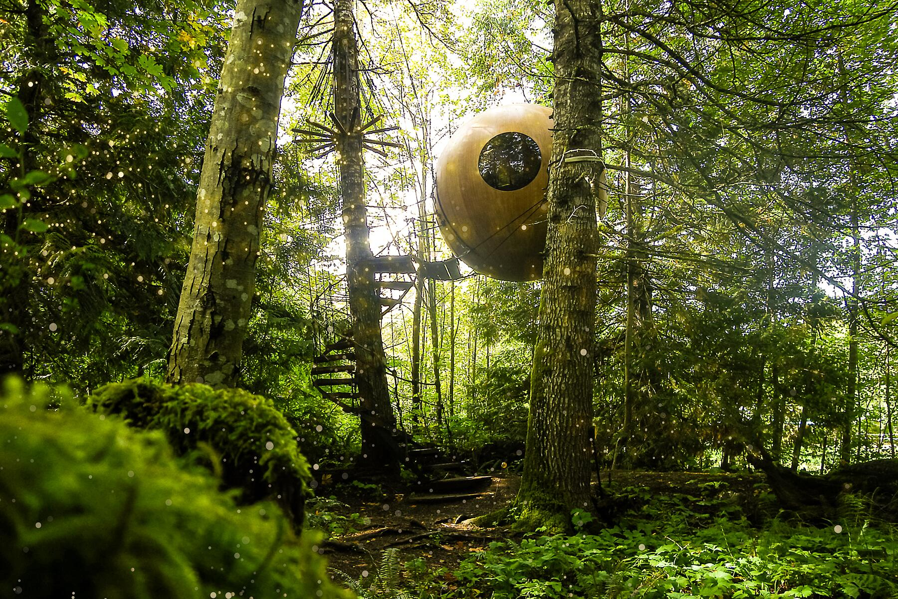 Whimsical and Magical Things to See and Do on Vancouver Island, Canada